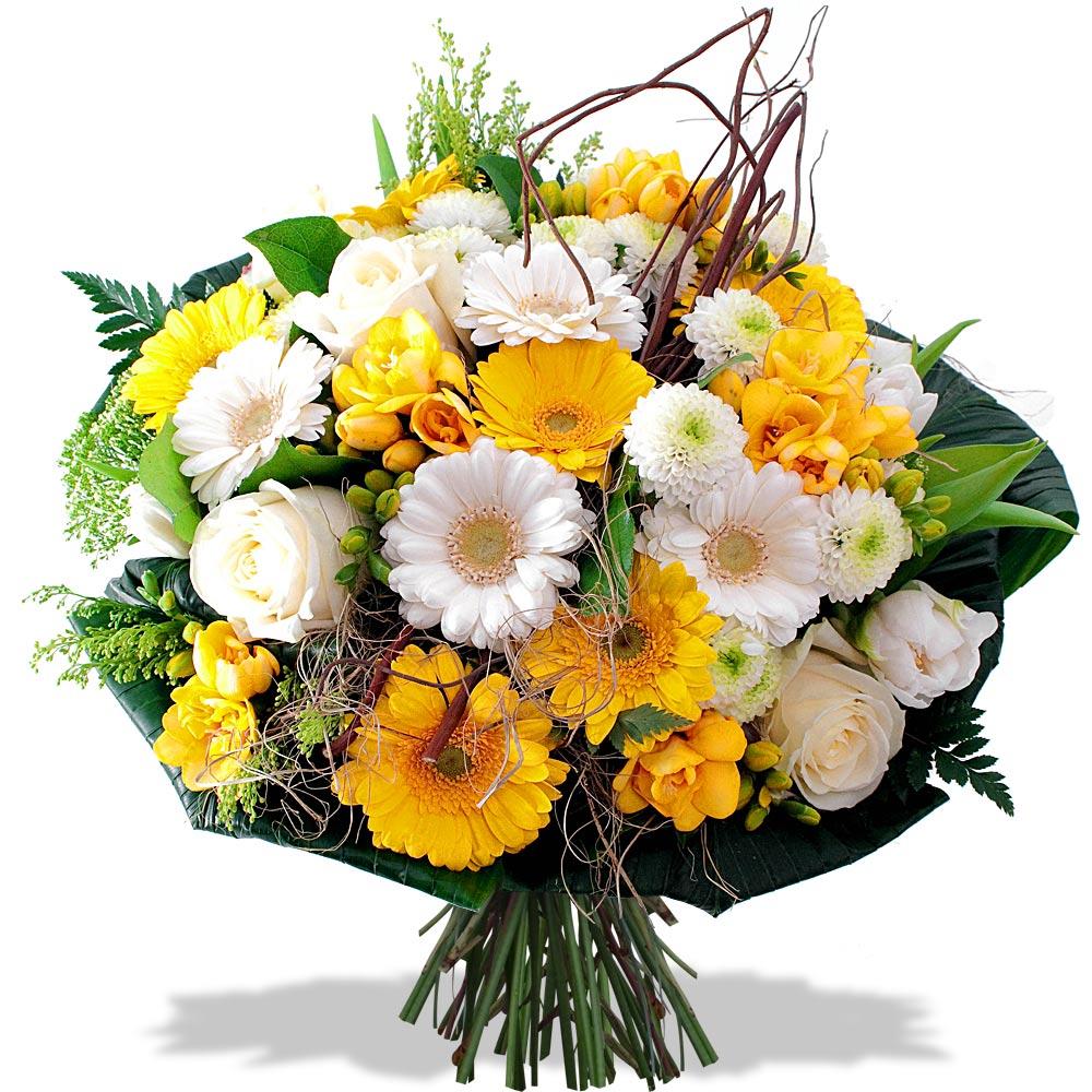 Jaune blanc fleurs et d co for Bouquet de fleurs lumineux