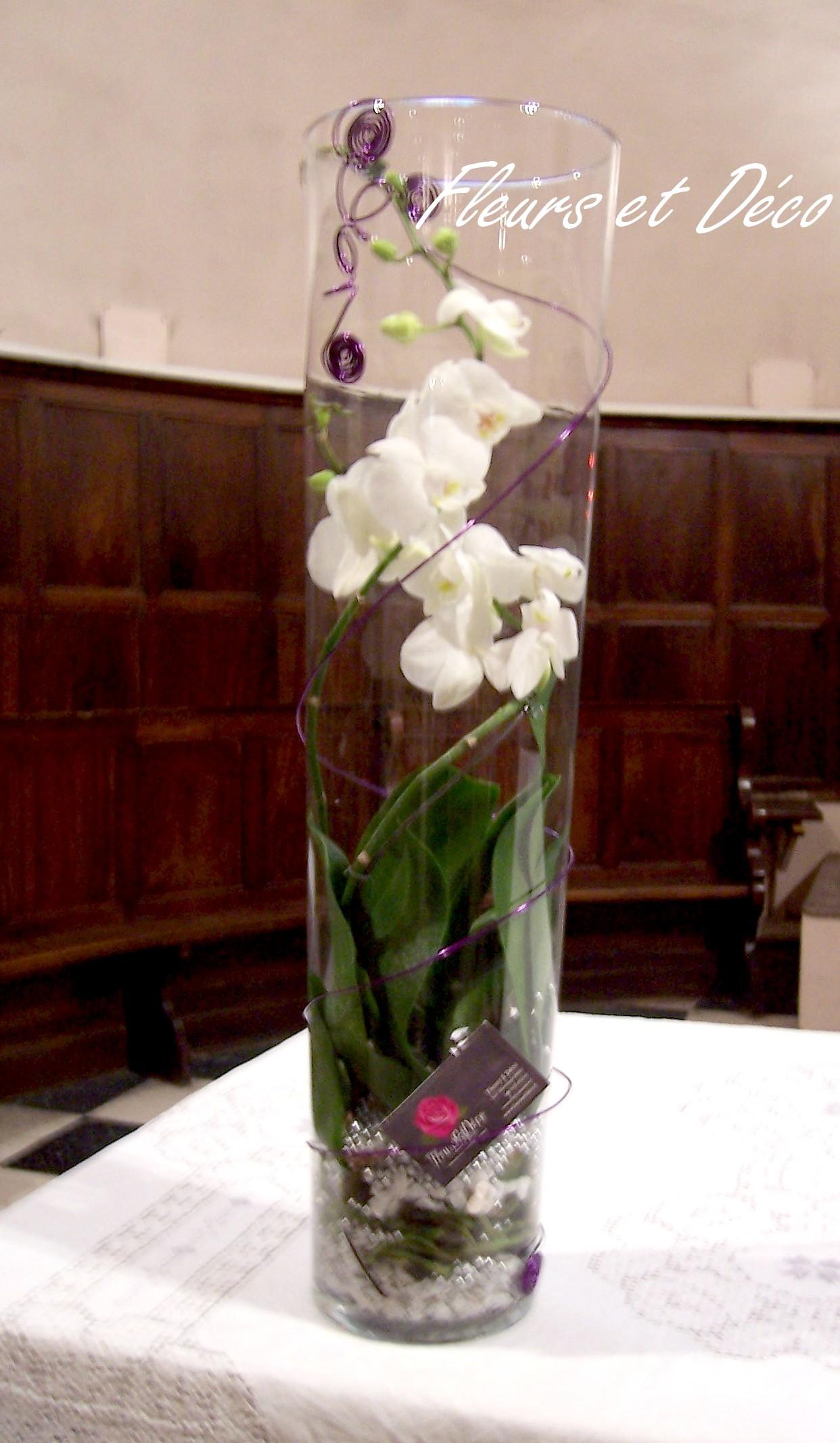 orchid e et son vase fleurs et d co. Black Bedroom Furniture Sets. Home Design Ideas