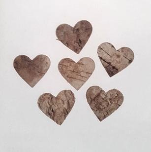 Coeurs écorce de bois www.fleursetdéco.fr
