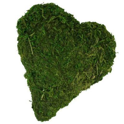 cœur en mousse