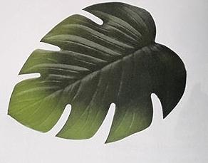 Feuillages/Plantes artificiels