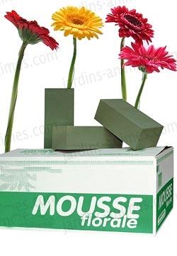 Mousse florale